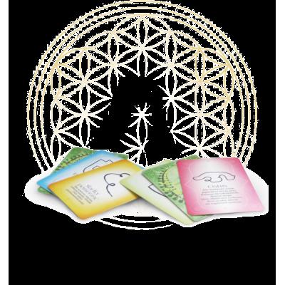 Knihy a karty